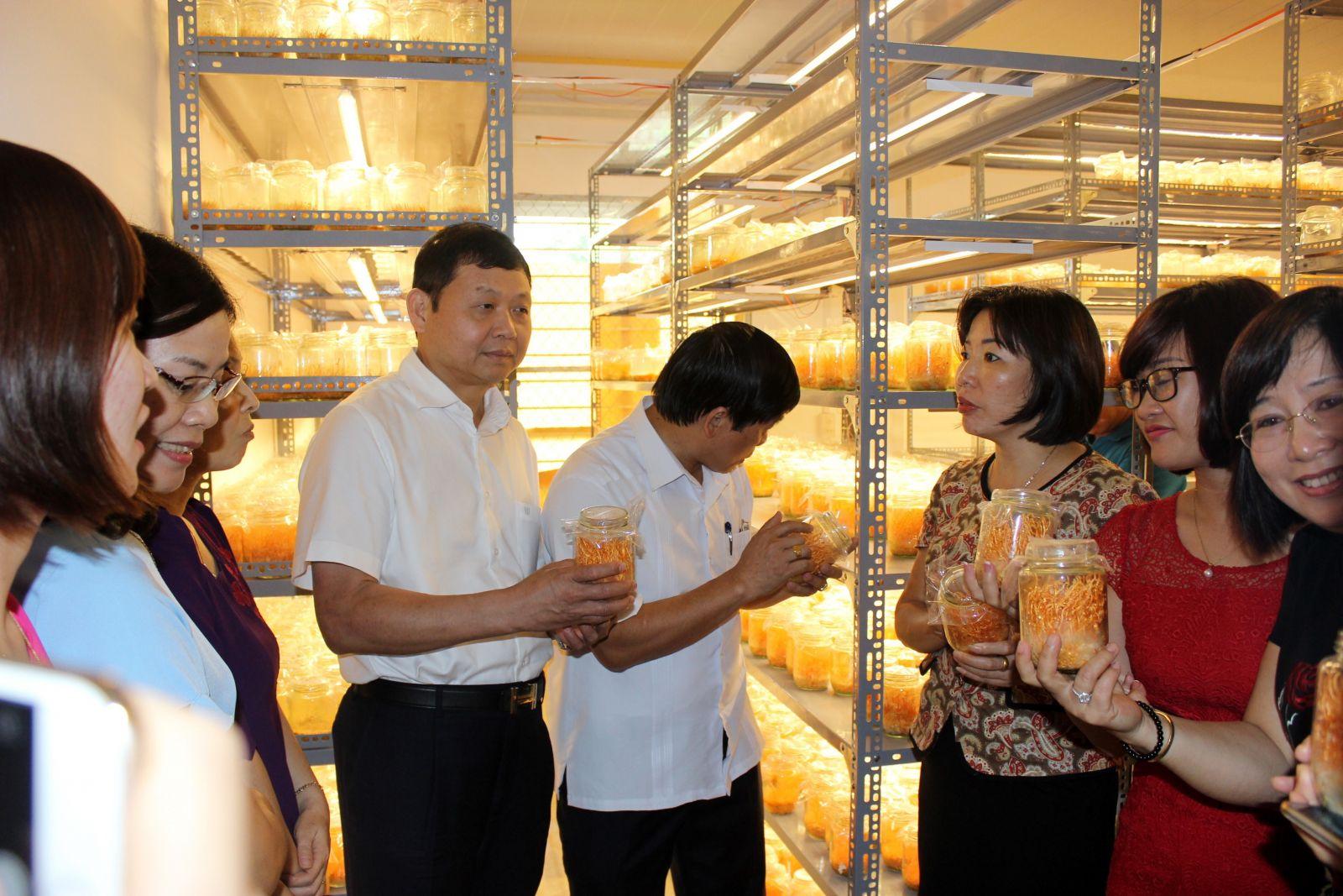 Vấn đề việc làm tại Phú Thọ