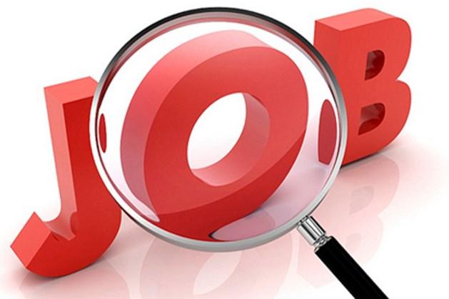 Tìm việc làm từ nguồn đáng tin