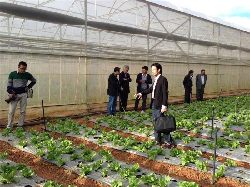 việc làm nông nghiệp tại hà nội 3