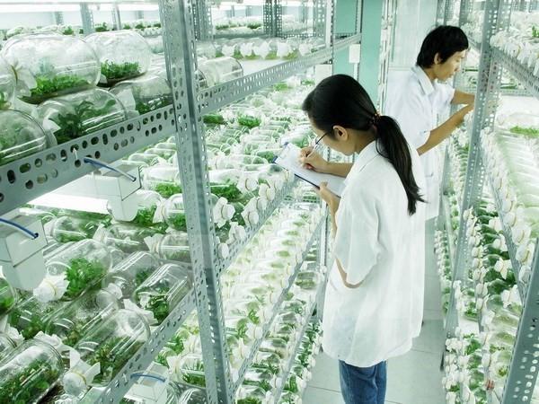 việc làm nông nghiệp tại hà nội 5