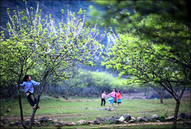 EvaReview.com - Các địa điểm tham quan hấp dẫn ở Mộc Châu bạn nên đi