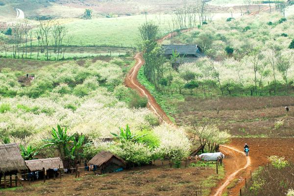VietAlert.com - Một vài nơi chớ bỏ qua trong những ngày Tết