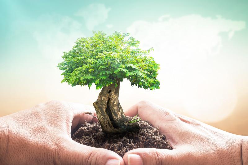 Cách ước lượng mức lương khi xin việc làm môi trường tại hà nội