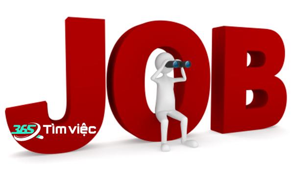 10 tuyệt chiêu giúp tìm việc làm tại Nam Định hiệu quả nhất