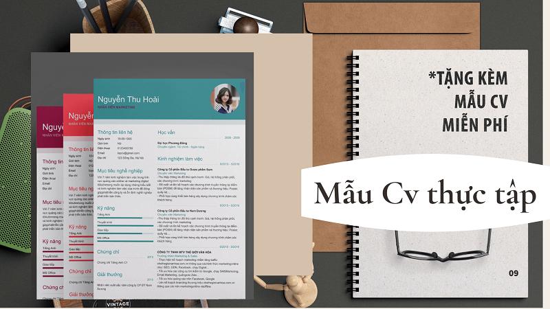 Gợi ý nội dung mẫu Cv thực tập chuẩn thu hút nhà tuyển dụng